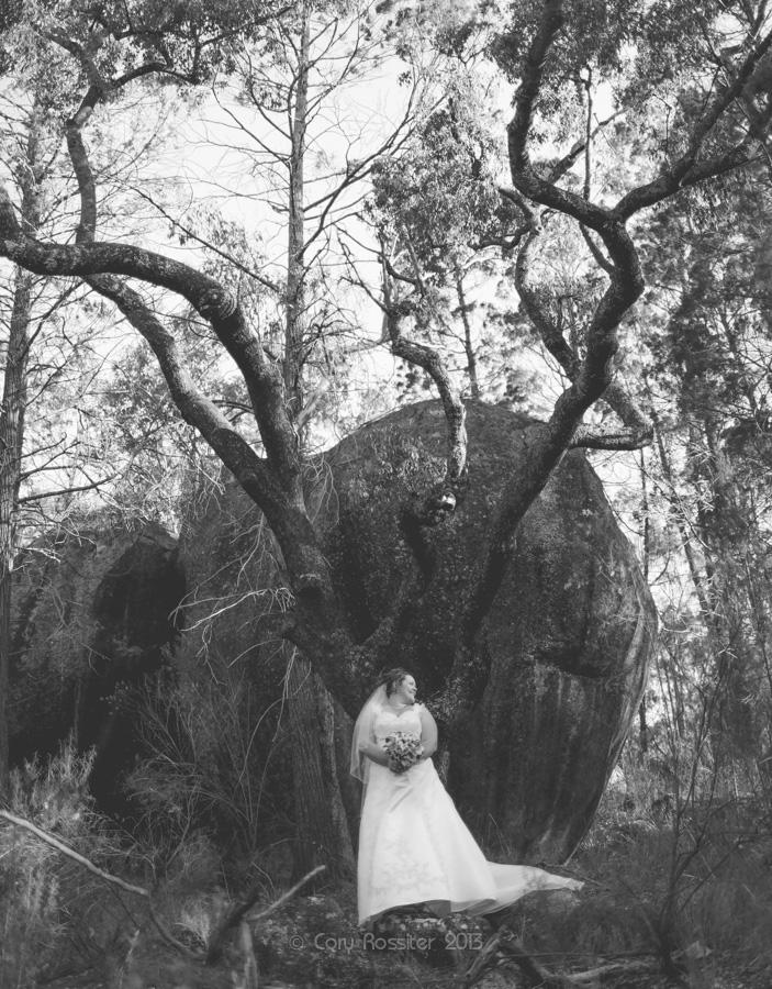melissa-tim-wedding-photography-ballandean-stanthorpe-qld-18