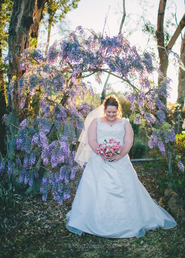 melissa-tim-wedding-photography-ballandean-stanthorpe-qld-21