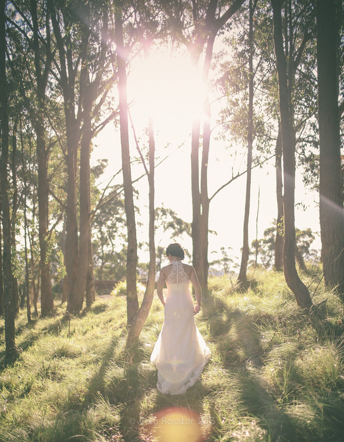 Zoe & David wedding @ Spicers Peak Lodge Maryvale SE Queensland Wedding Photography by Cory Rossiter -50