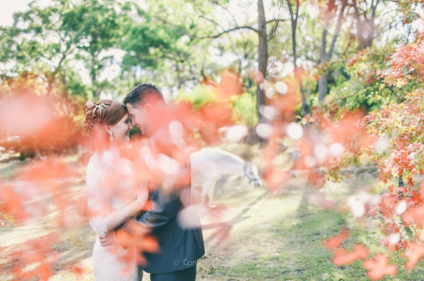 Elizabeth_Alan_wedding_diamondvale_cottages_stanthorpe_by-cory-rossiter_photography_design-38