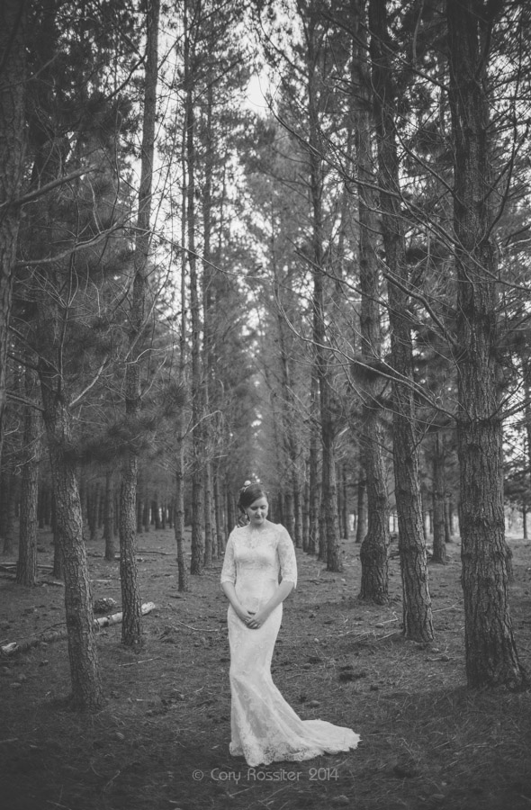 Elizabeth_Alan_wedding_diamondvale_cottages_stanthorpe_by-cory-rossiter_photography_design-60