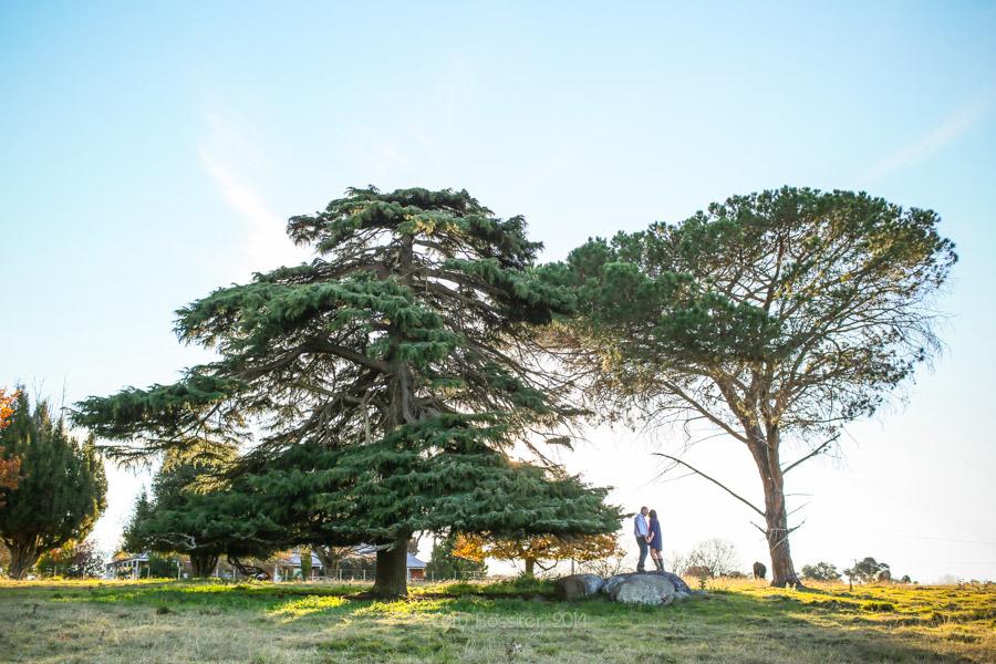 Wedding_Commercial_Portrait_photography_brisbane_sunshine_coast_gold_coast_toowoomba_by_cory_rossiter_www.corephoto.com.au-22