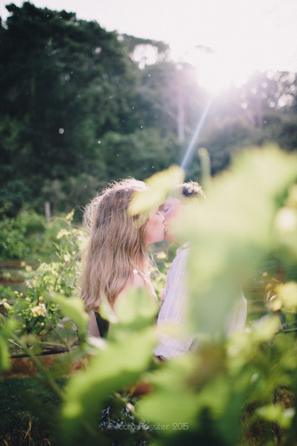 Jade-Drew-Engagement-session-Maleny-Manor-sunshine-coast-photography-by-cory-rossiter-15